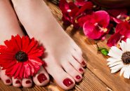 57242933 - beautiful classic red pedicure on female hand. close-up. picture taken in the studio on the background of flowers